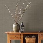 3118-016911 Birch and Sparrow Kent Grasscloth by Chesapeake Wallpaper2