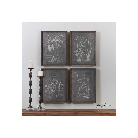 32537 Root Study S/4 by Uttermost-2