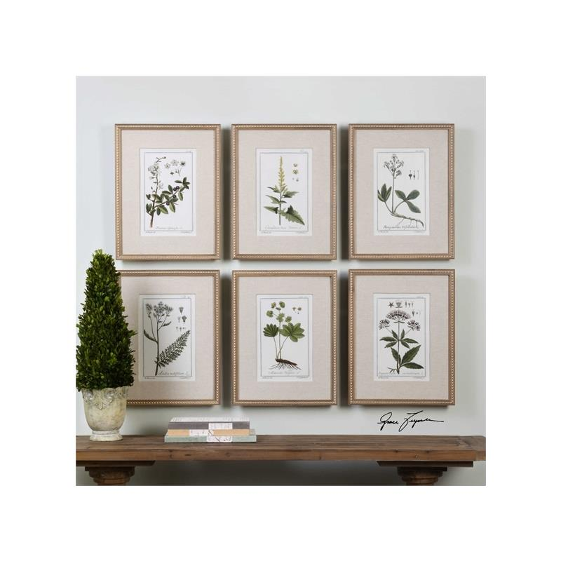 33651 Green Floral Botanical Study S/6 by Uttermos