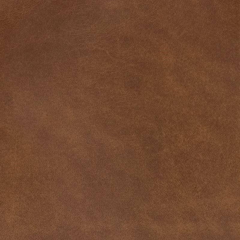 B1752 Simba, Brown Upholstery by Greenhouse Fabric