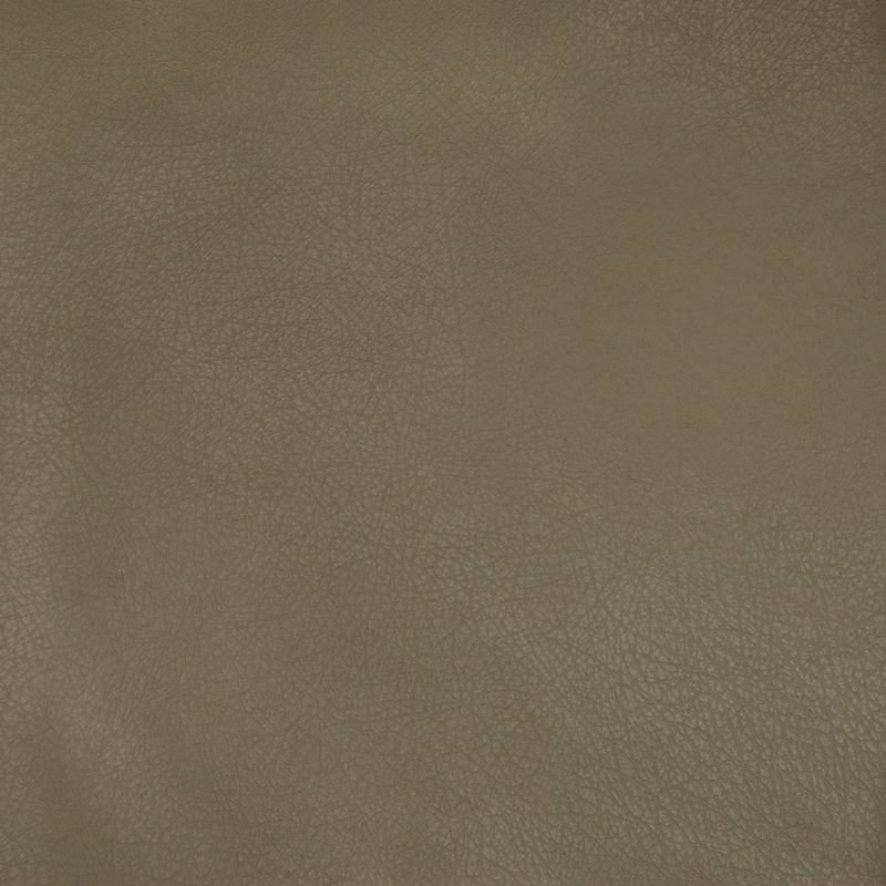 A9238 Sage, Brown Solid Upholstery by Greenhouse F