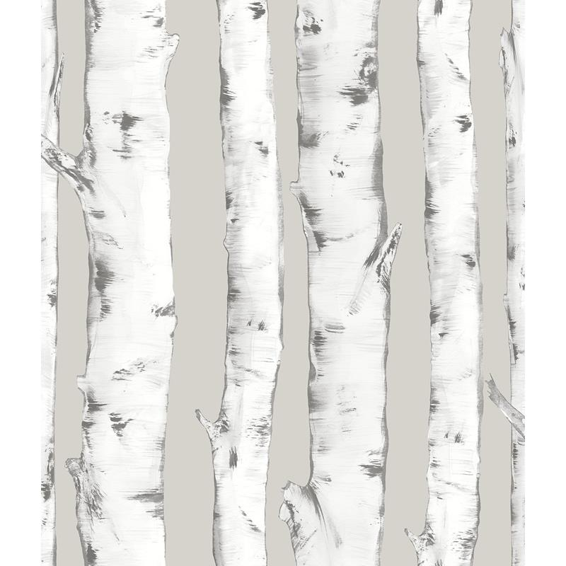 NHS3196 Downy Birch, Nature Peel and Stick Wallpap