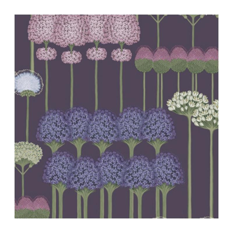 115-12036 Allium, Mulb Heather Violet Print by Col
