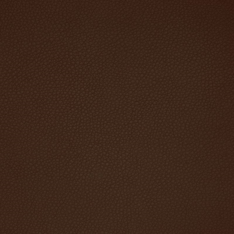 A9207 Earth, Brown Solid Upholstery by Greenhouse