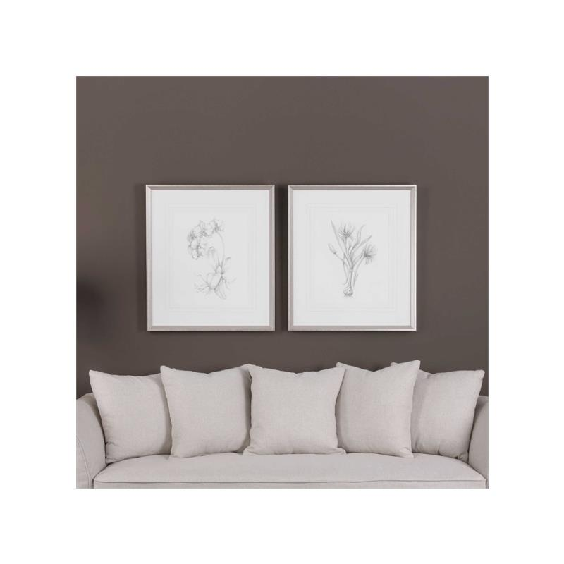 33649 Botanical Sketches S/2 by Uttermost