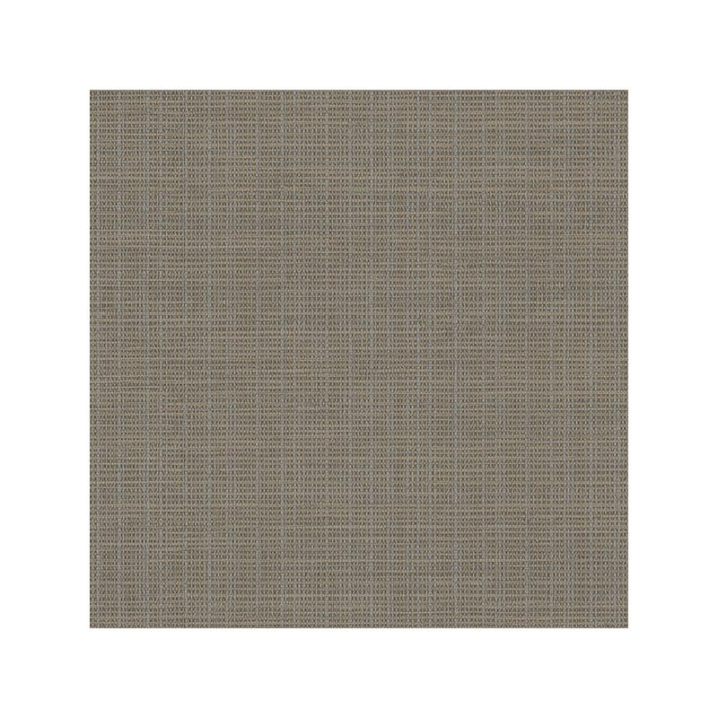 3118-016911 Birch and Sparrow, Kent Grasscloth by