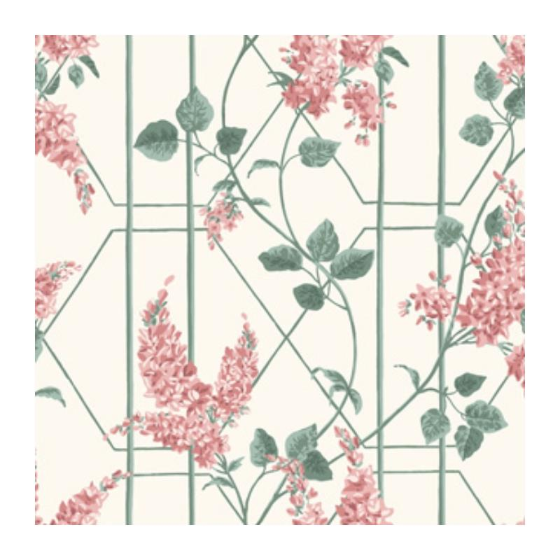 115-5012 Wisteria, Coral Sage Parch Print by Cole