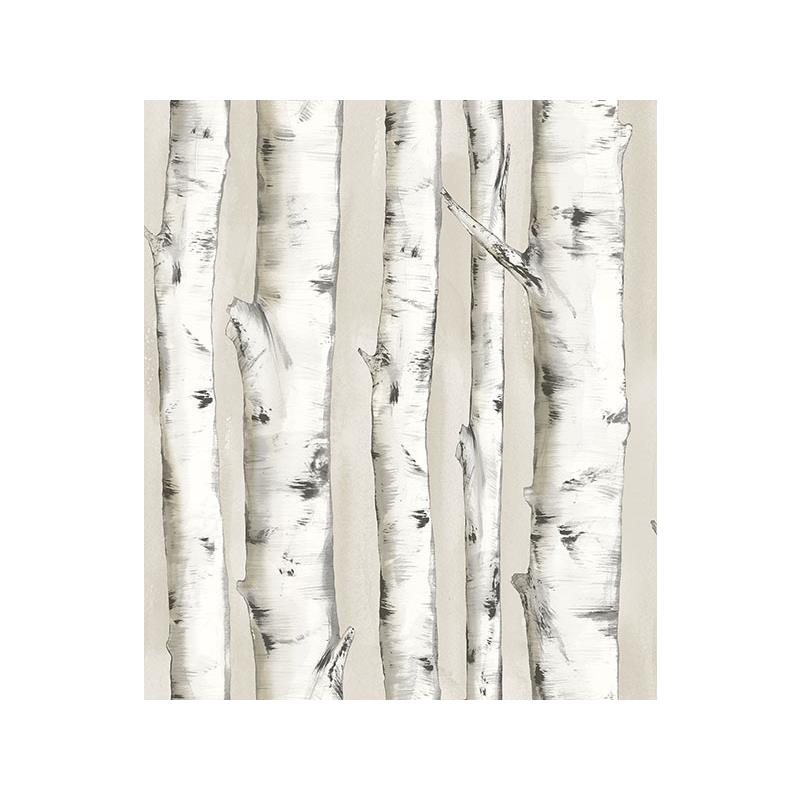 3118-12601 Birch and Sparrow, Pioneer Birch Tree b