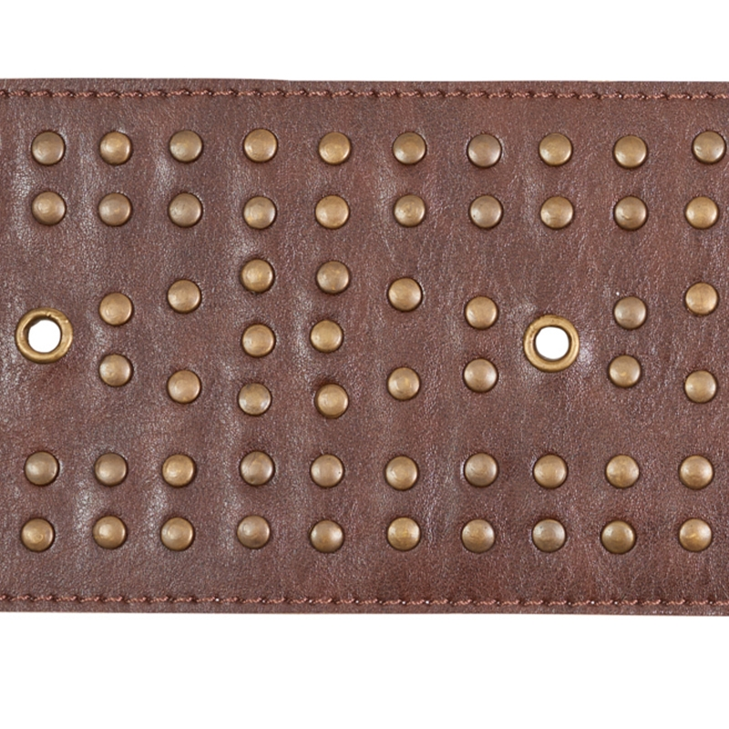 76091 Studded Leather Trim, Brown by Schumacher Fa