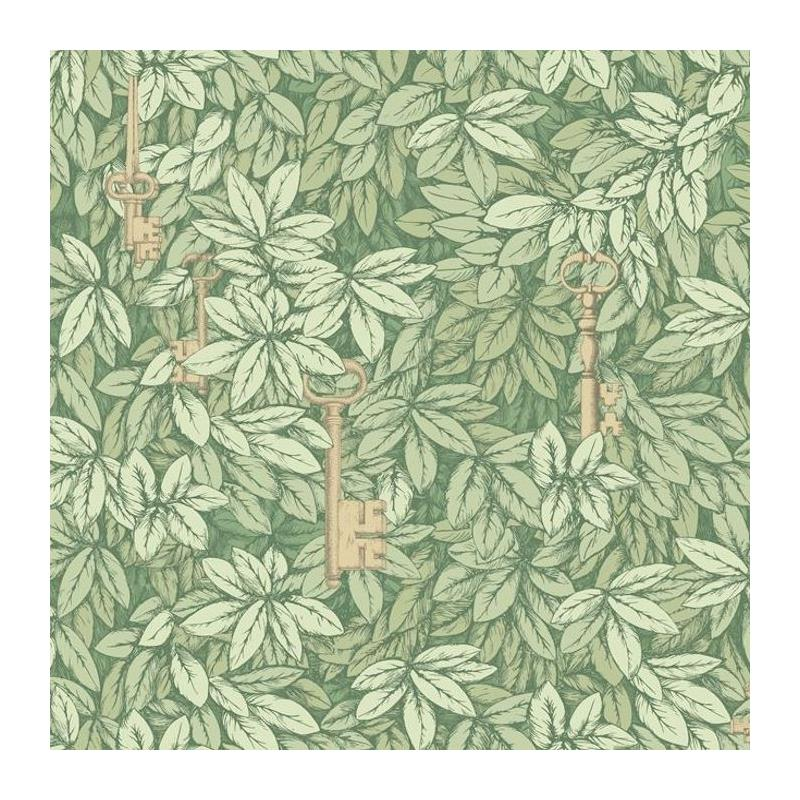 114-9018 Chiavi Segrete, Olive Print by Cole and S