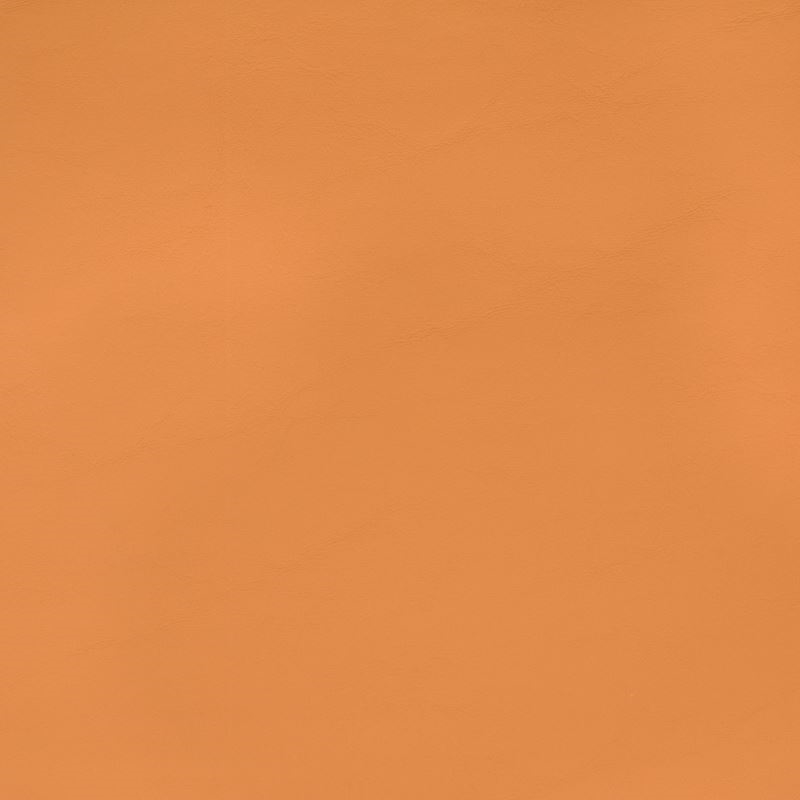 B2372 Allante Butterscotch, Orange Solid Upholster