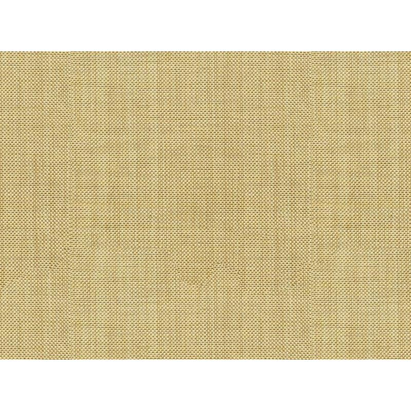 30299.1611.0 Beige Multipurpose Solids Plain Cloth