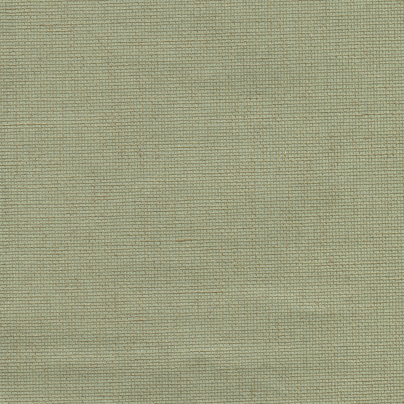 2732-80006 Canton Road, Leyte Sea Green Grasscloth