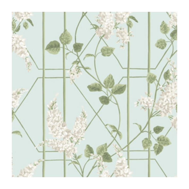 115-5014 Wisteria, Stone Olive D Egg Print by Cole