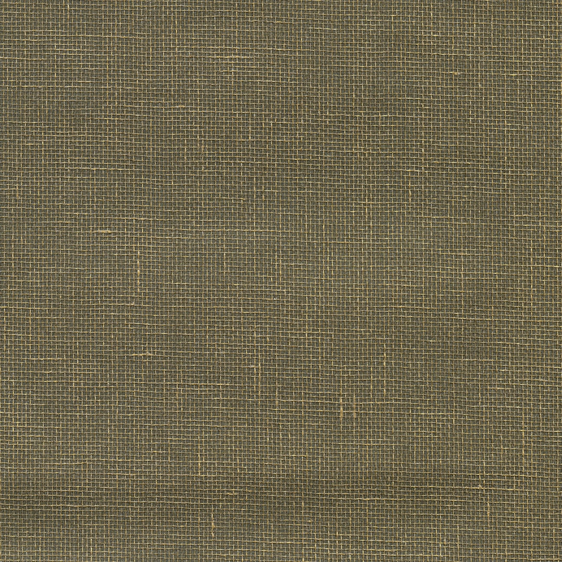 2732-80000 Canton Road, Leyte Pewter Grasscloth by