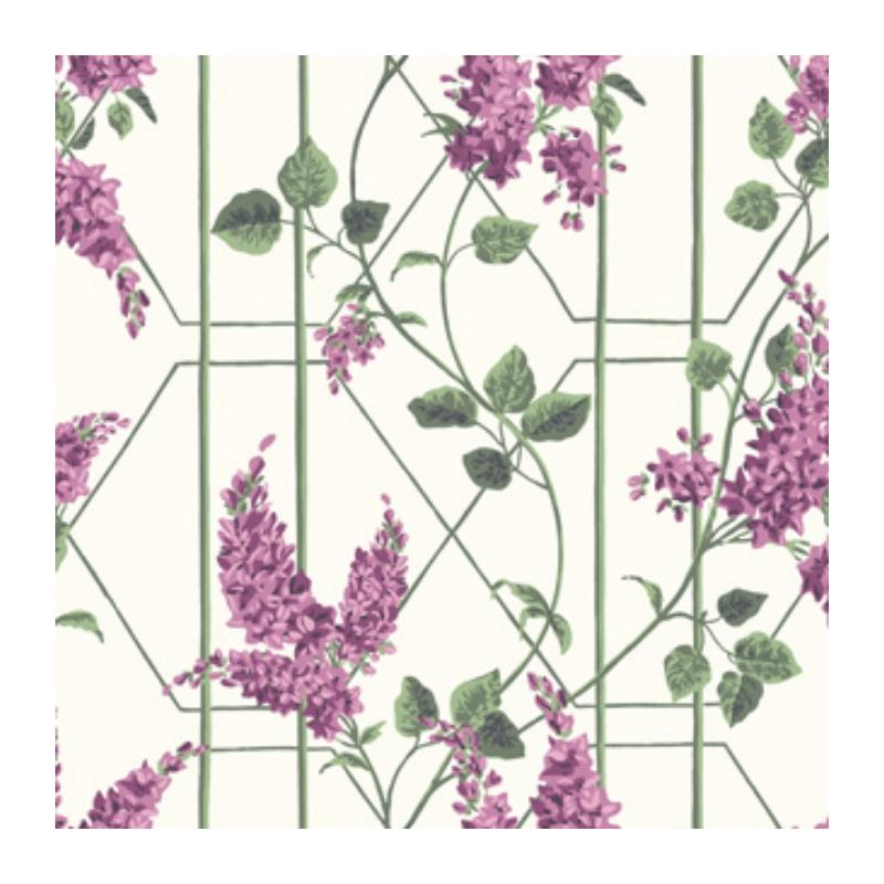 115-5013 Wisteria, Magenta Green Wh Print by Cole