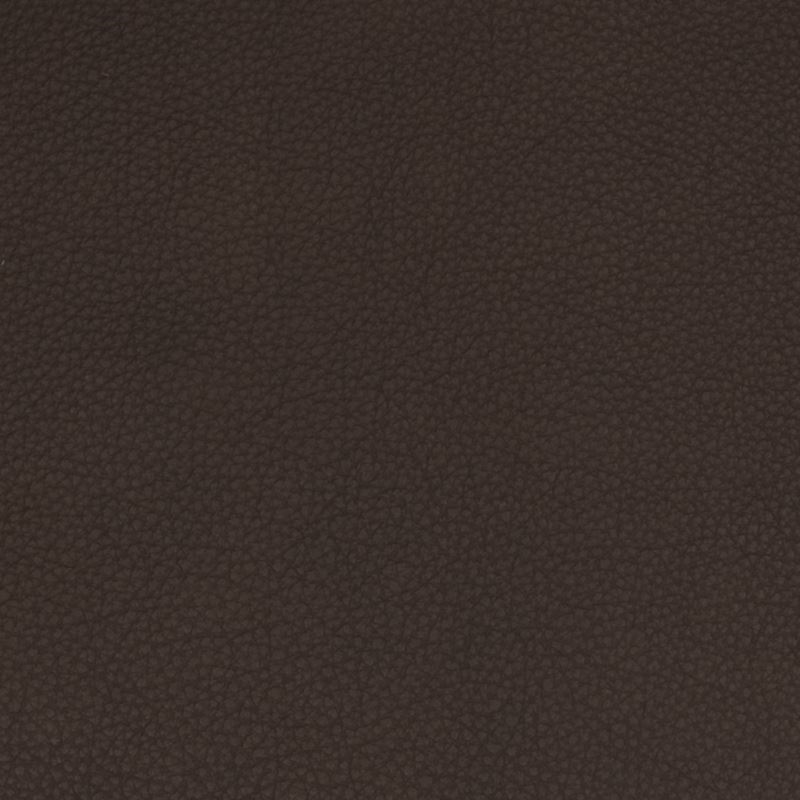 B1714 Java, Brown Upholstery by Greenhouse Fabric