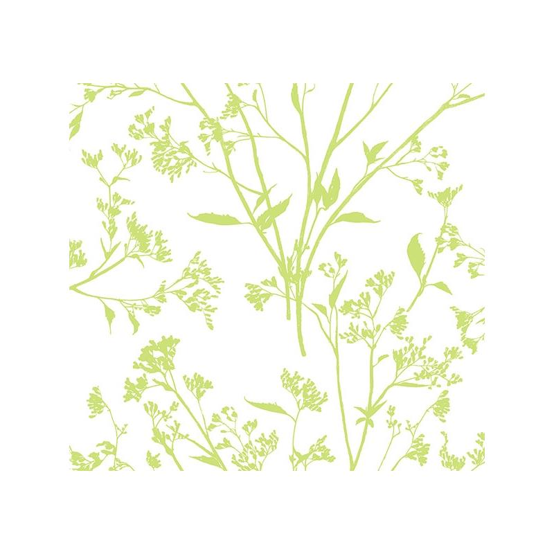 2927-80704 Newport Southport Chartreuse Delicate B