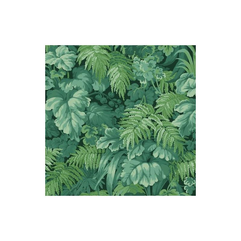 113-3009 Royal Fernery Forest Green by Cole and So